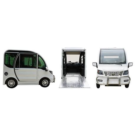 Auto elettrica per disabili
